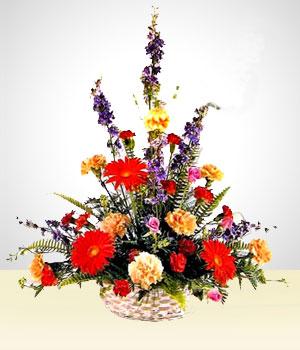 Celestial Claveles Multicolores Arreglos Florales San